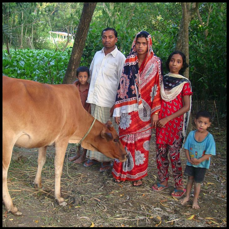 make a dream come true: buy a cow  One cow makes a world of difference to a family in Bangladesh. Take for example the family of Minarul in Rajshahi, close to the Indian border. The family lives together with 4 other families to share housing and living costs. Minarul and his wife have three children: a 4 year old, a 6 year old and an 8 year old.