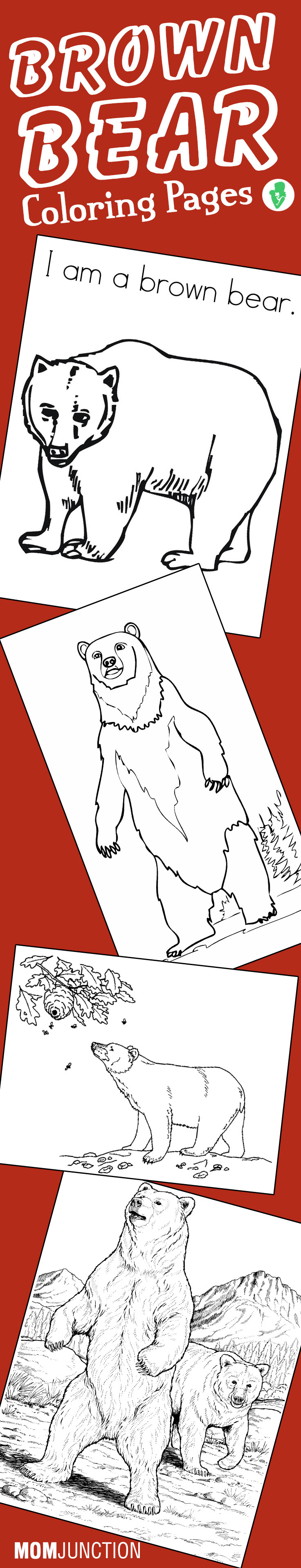 Top 10 Free Printable Brown Bear Coloring Pages Online