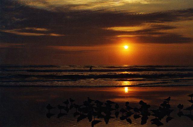 #Morning Surfing On Daytona Beach    Like, repin, share Peace!