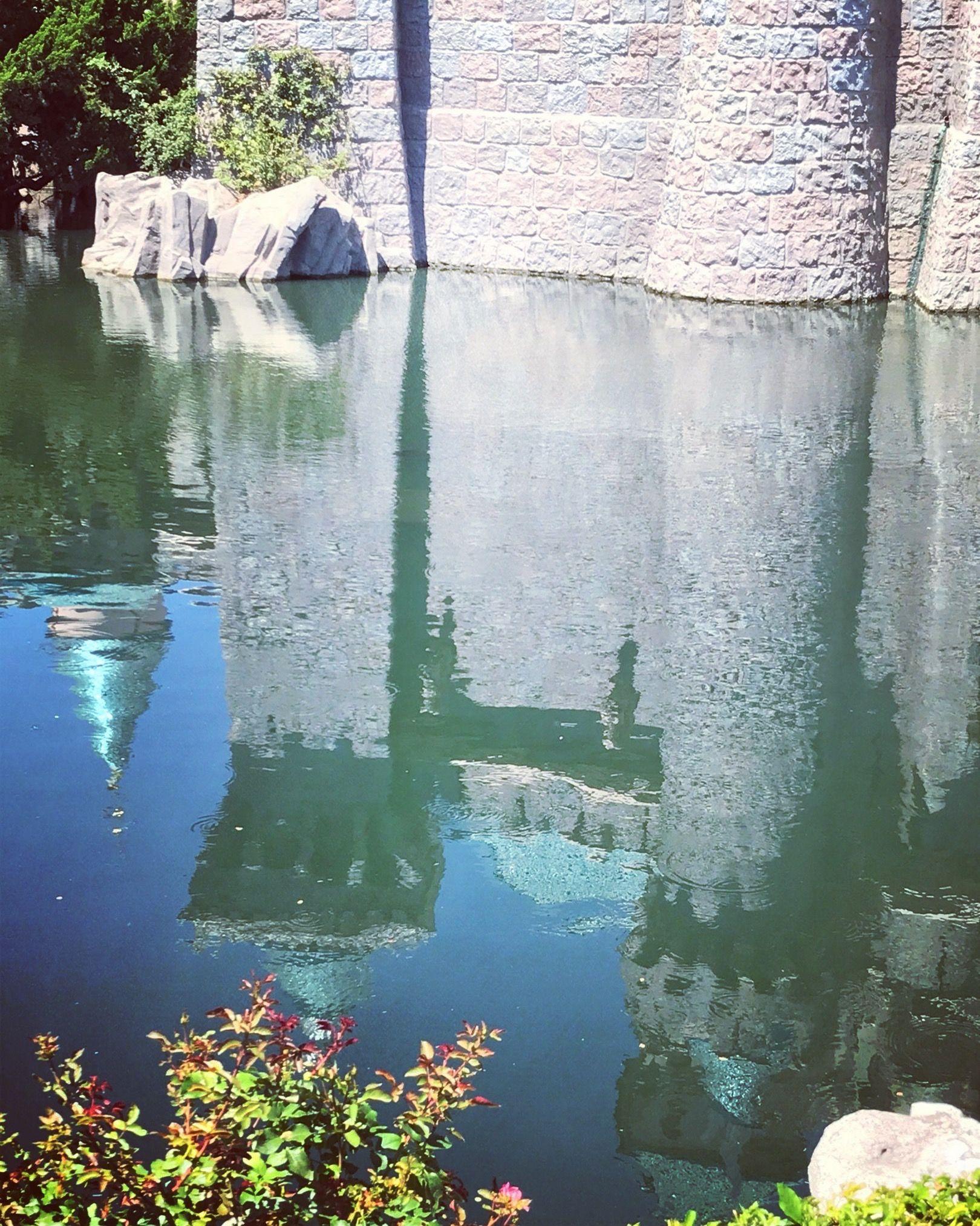 Castle moat Disneyland photography, Disneyland resort