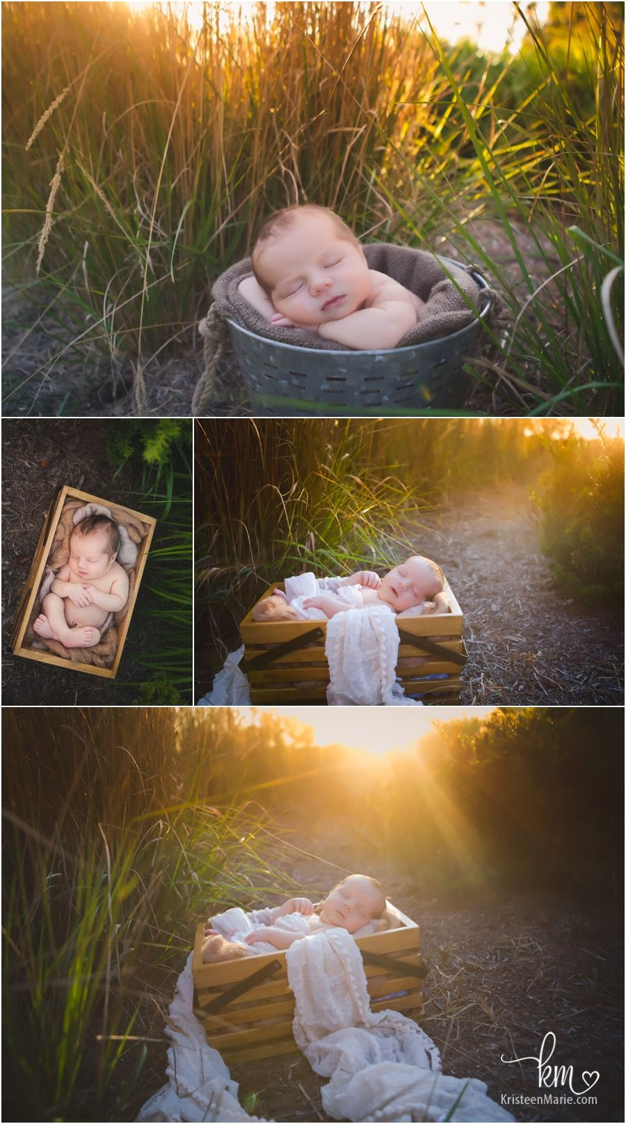 Outdoor newborn photography at sunset baby in a basket outside