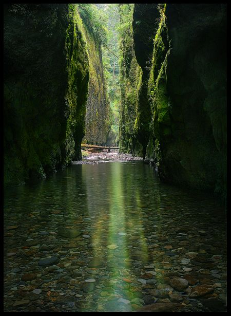 Oneonta Gorge in The Columbia River Gorge, Oregon, is definitely one of my favorite short hikes. I'm sure to head here on one of our (few) very hot days of summer. Climb over a log jam, the hike along and in the river until you get to the cavern and waterfall at the end. My boys and brothers like climbing up the rock face and jumping off part of the waterfall.