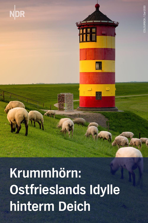 Krummhorn Ostfrieslands Landliche Idylle Hinterm Deich Ostfriesland Deich Kleine Orte