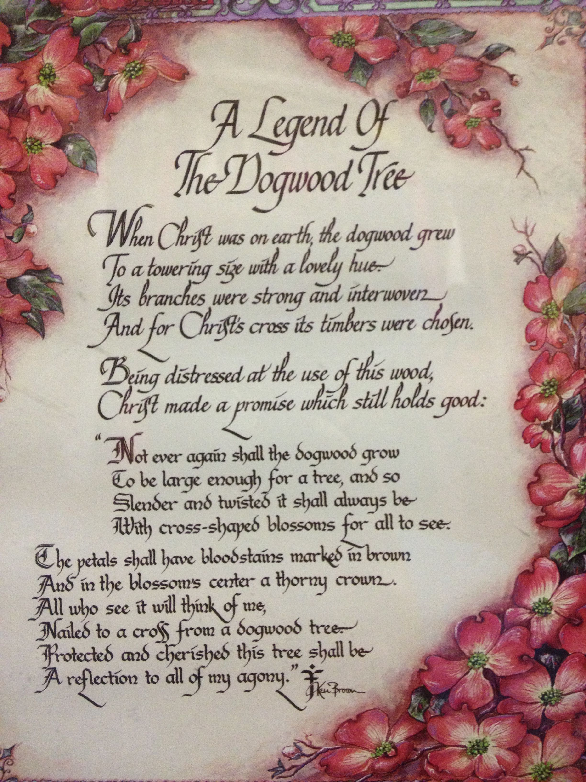 image regarding Legend of the Dogwood Tree Printable identify Legend Of Dogwood Trees Trees Dogwood trees, Blossom