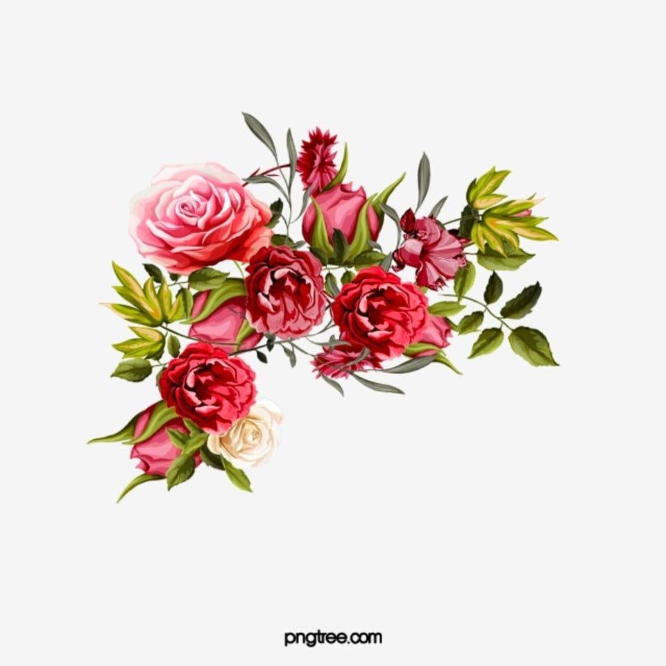 Rose Border Vermelho Rosa Renda Imagem Png E Psd Para Download Gratuito Rose Clipart Rose Free Clip Art