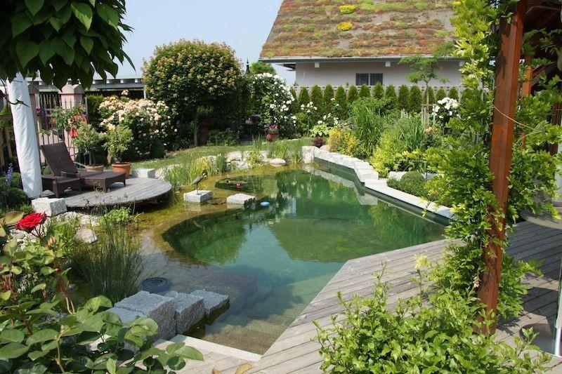 piscine naturelle en Allemagne teich Pinterest - Piscine A Construire Soi Meme