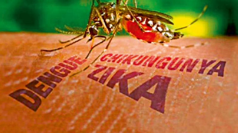 vinod: What is Zika virus