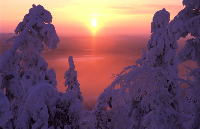 Winter sun in Kuusamo, Finnish Lapland