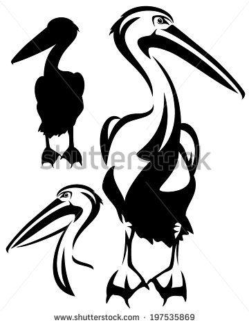 pelican bird black and white outline vector collection of bird