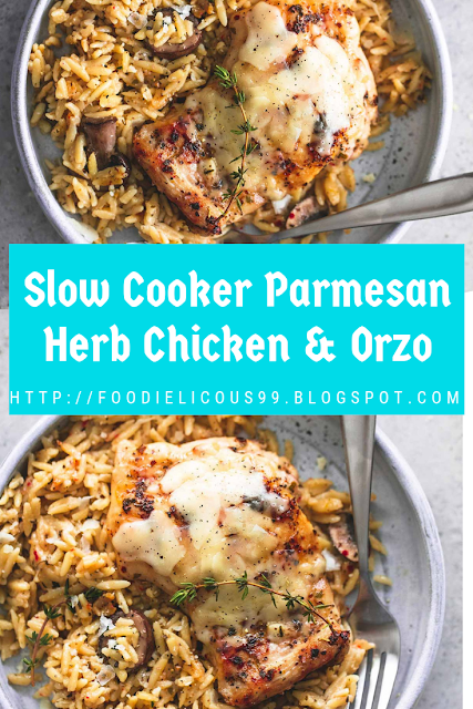 Slow Cooker Parmesan Herb Chicken Orzo Slow Cooker Recipe