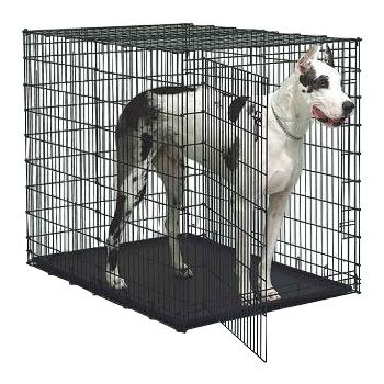 Indoor Sturdy Plastic Large Dog Crate · View larger image