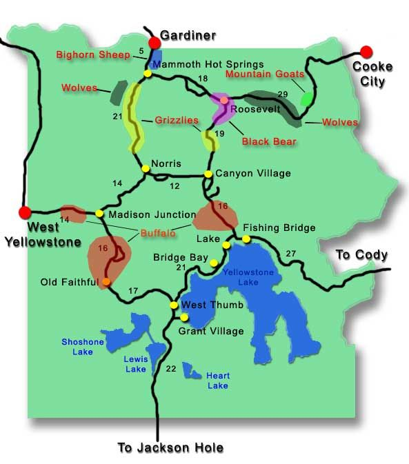 Yellowstone map - Google Search | Cars | Yellowstone camping ...