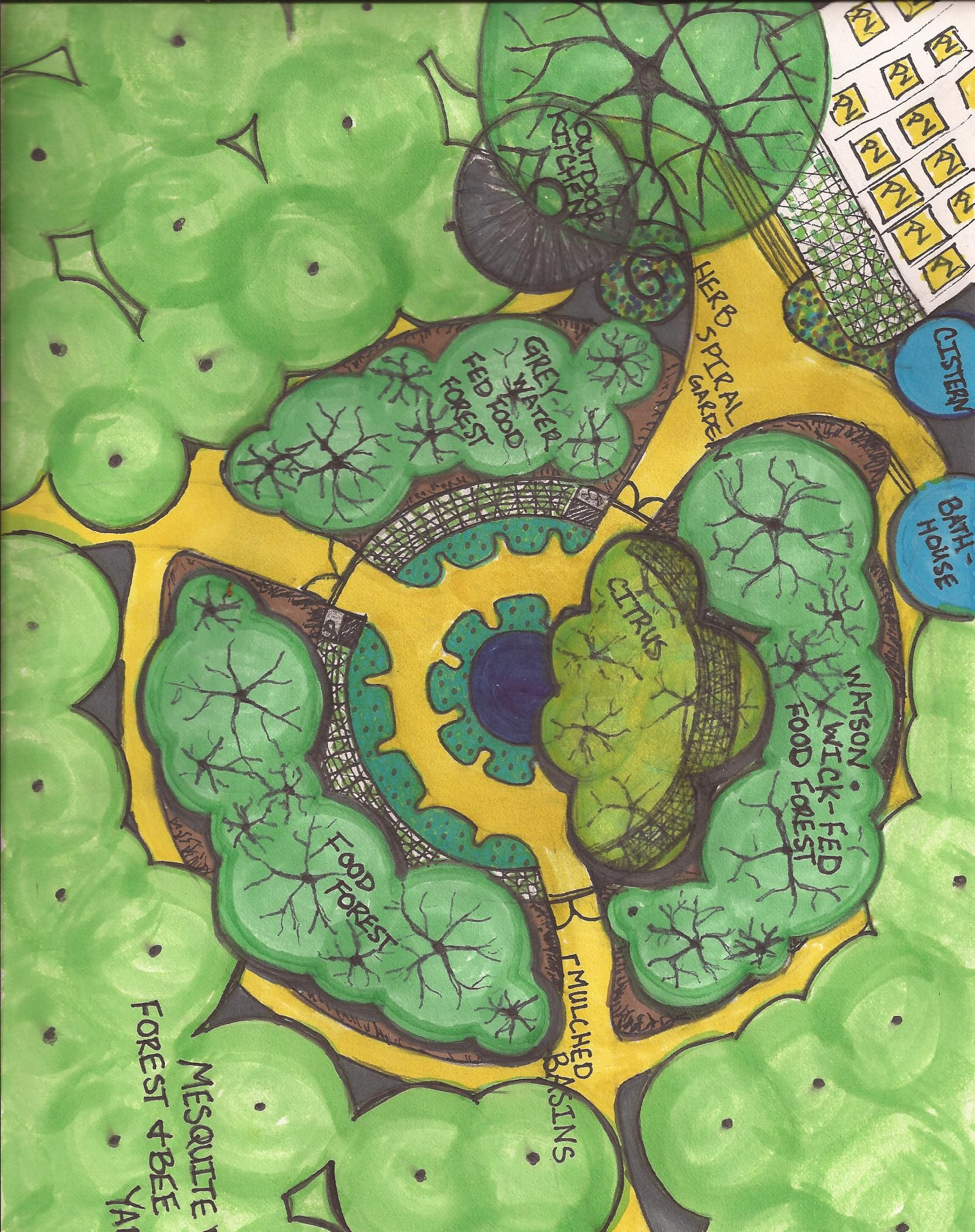 mandela gardening klorofyl pinterest