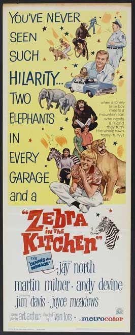Zebra In The Kitchen 1965 Andy Devine Zebra Movie Posters