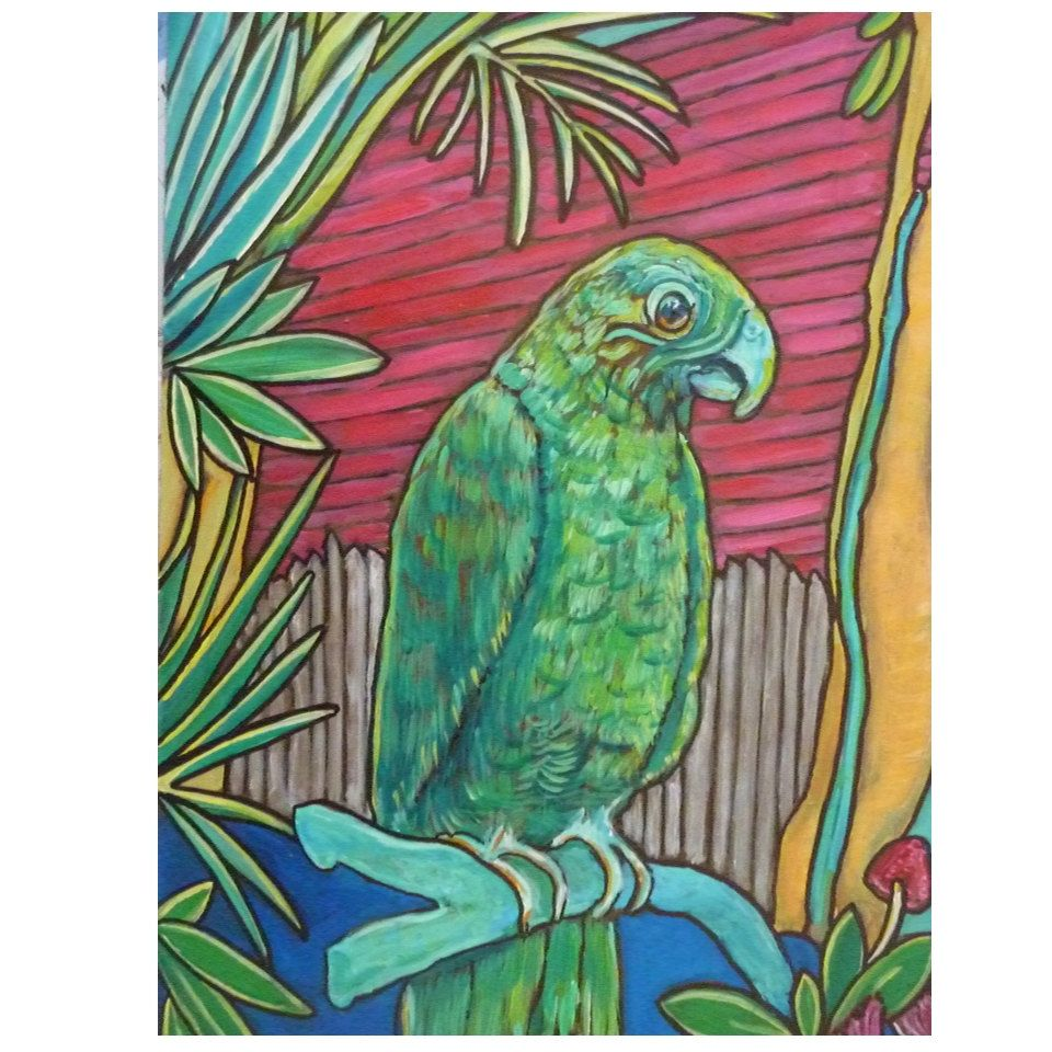 key west florida original painting of a parrot on duval street