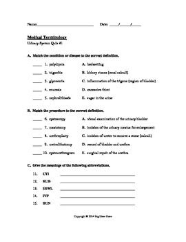 Printables Urinary System Worksheet urinary system worksheet davezan collection of bloggakuten
