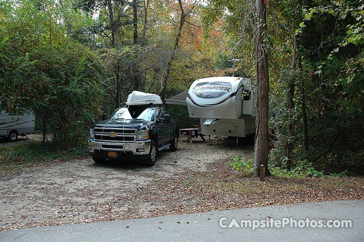 Myrtle Beach State Park Campsite Photos Camping Info Reservations Myrtle Beach State Park State Parks Myrtle Beach