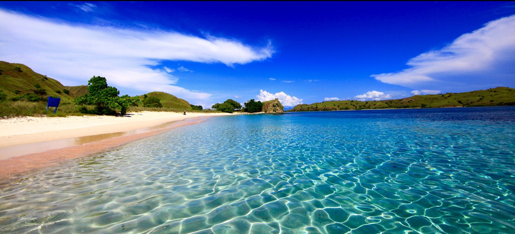 Pin by Queenyo on KOMODO ISLAND With images  Beaches