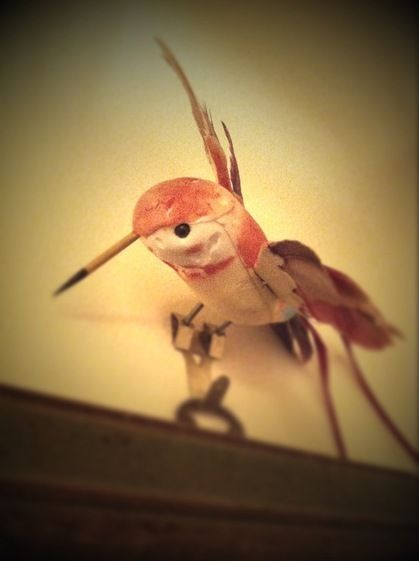 Take care! Today's beak is a toothpick.