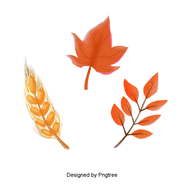 Simple Cartoon Hand Painted Autumn Element Design Maple Leaf Clipart Maple Leaf Orange Png Transparent Clipart Image And Psd File For Free Download Simple Cartoon Leaf Clipart Maple Leaf Clipart