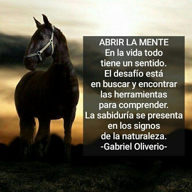 Vida Y Sabiduría X Gabriel Oliverio Frases De Caballos