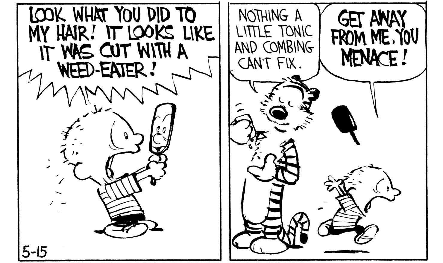 Calvin S Bad Hair Daze Gocomics Com Calvin And Hobbes Comics Calvin And Hobbes Comics
