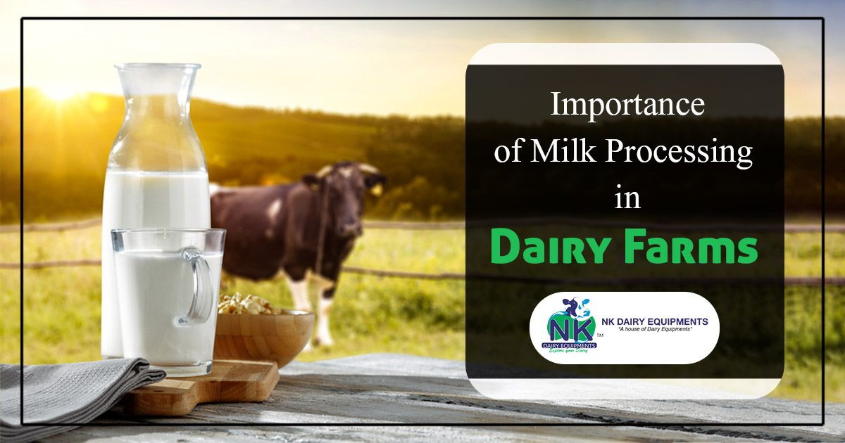 Importance of Milk Processing in Dairy Farms in 2020