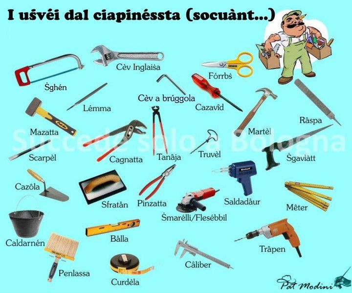 Handyman in Bolognese dialect.   www.succedesoloabologna.it