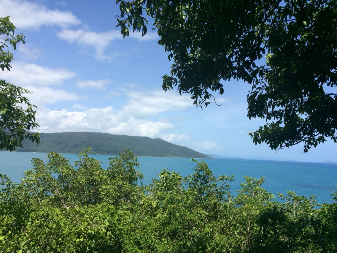 The view from the rainforest walk. Love Daydream Island.