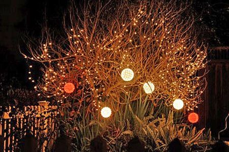 Outdoor Fairy Lights Solar Powered: fairy lights in the garden images | £19 for for lights with 200 Diamond LED,Lighting
