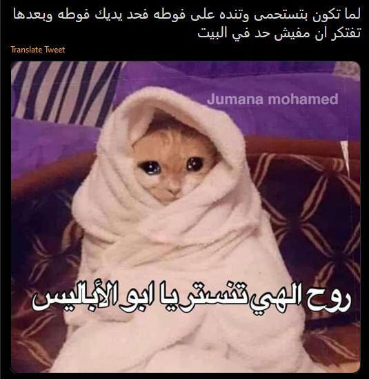 Mego Funny Relatable Memes Cute Memes Funny Laugh