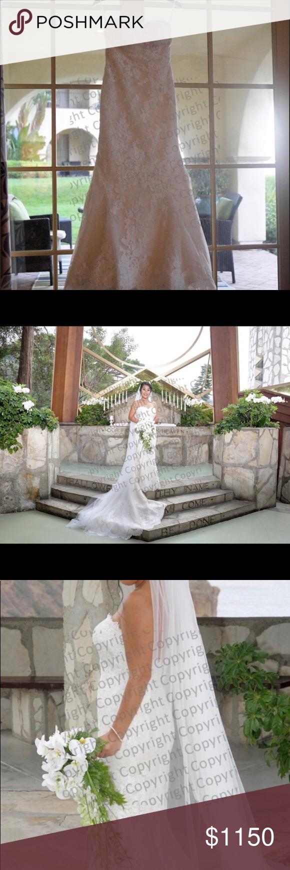 Pronovias princia wedding dress pronovias dresses dark beige and