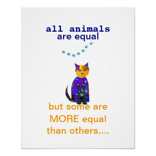 Cute Cat Poster Quotation With Original Art Quotes Cat Poster