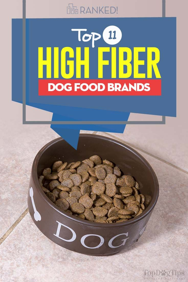 11 Best High Fiber Dog Foods Dog food recipes, Best dog