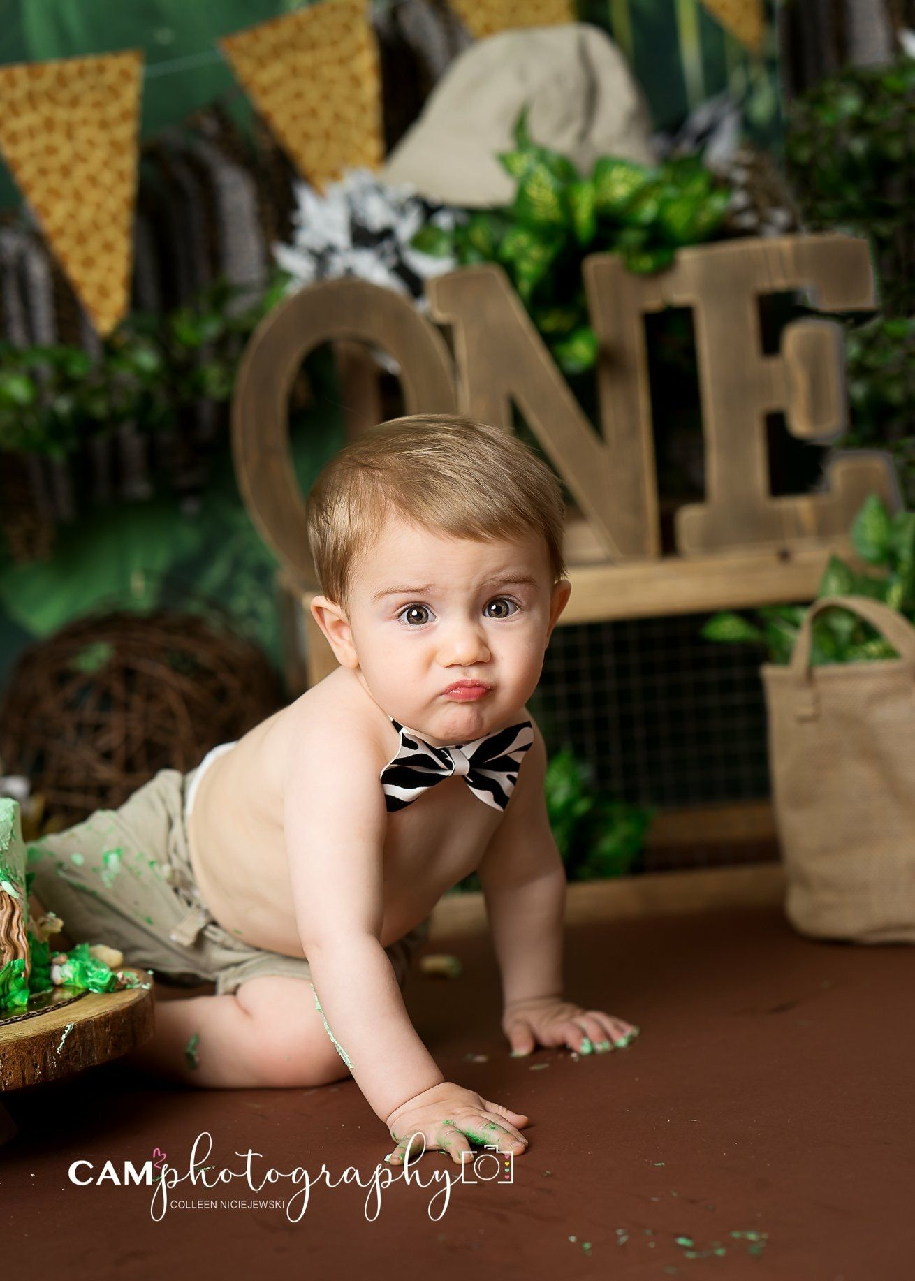 Jungle theme animal print bow tie first birthday cake smash smash cake photographer child photo baby boy wild one animal tiger love