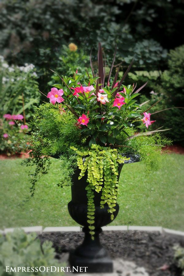 21 gorgeous flower planter ideas urn planters and limes for Garden arrangement of plants