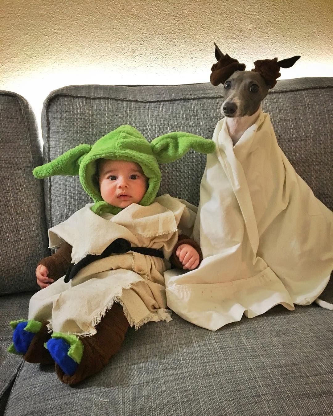 Baby Yoda Costume And Dog Costume Instagram Baby Yoda Costume