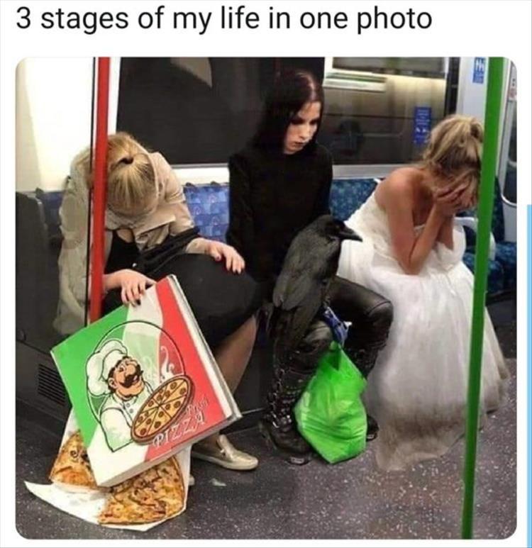 Afternoon Funny Meme Dump 36 Pics