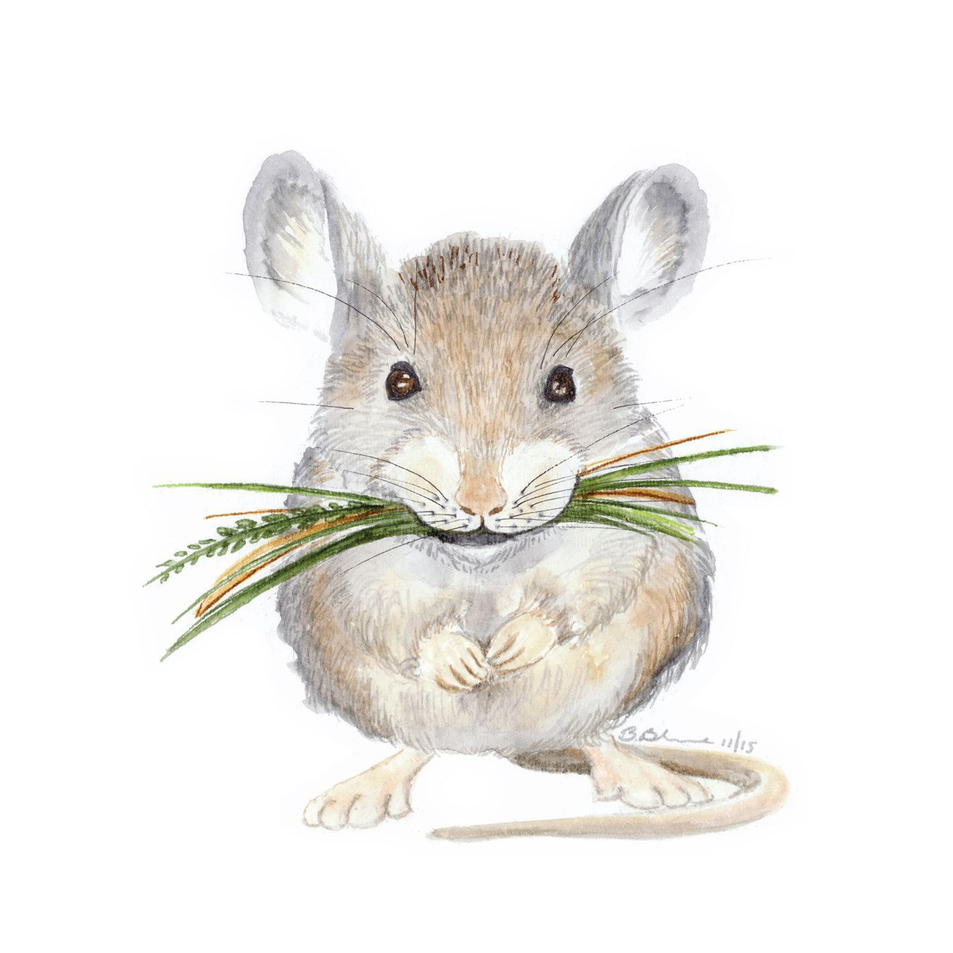 Baby Mouse Portrait Aquarell tiere, Maus malen und Tiere