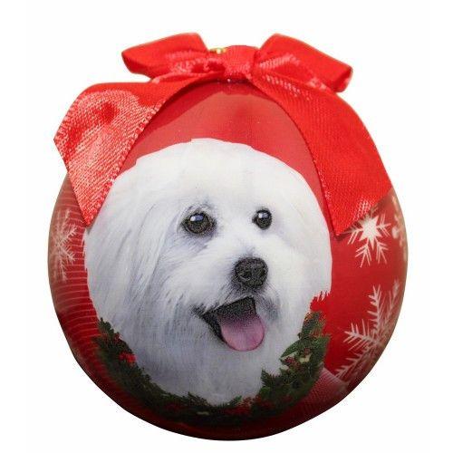 Maltipoo Shatterproof Dog Breed Christmas Ornament | Maltipoo, Dog ...