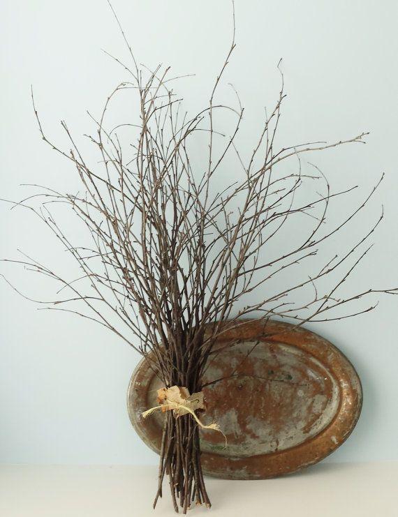 Birch Branches Decorative Birch Twigs Bundle by OutdoorIndoorDecor