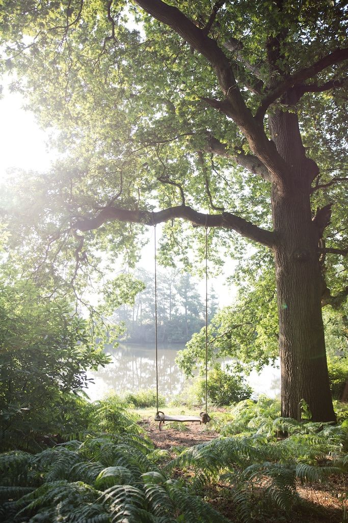 Photo of A Garden Worth the Wait: Heckfield Place in Hampshire, Engla…