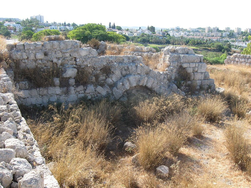 Field Of Joshua Of Beth Shemesh: Tel Beit Shemesh: Philistines Took The Ark Of God. After
