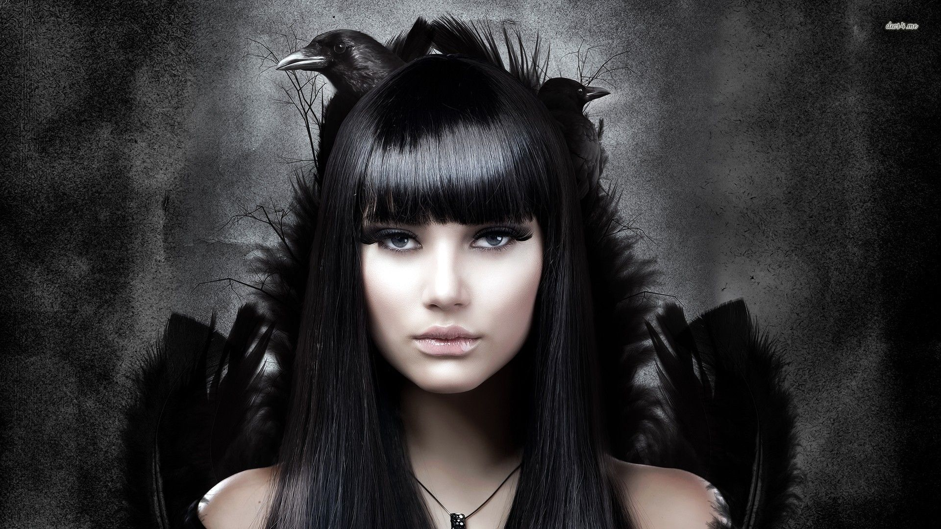 Goth girl with her raven HD wallpaper Gothic hairstyles