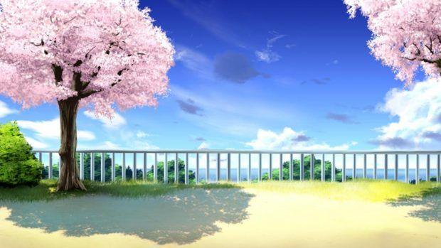 Anime Tree Background