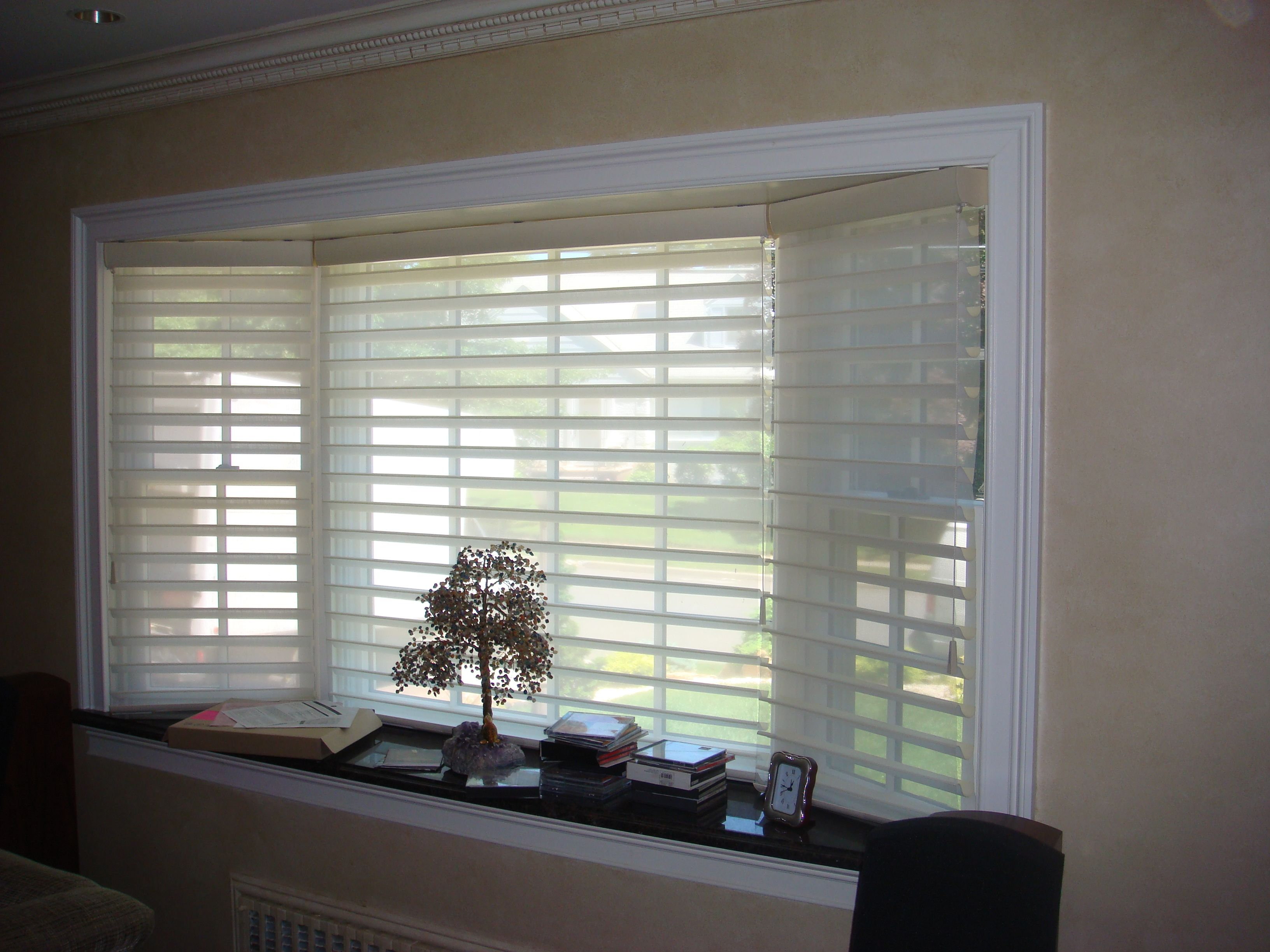Hunter douglas silhouette in toujours fabric and for Blinds types of window treatments
