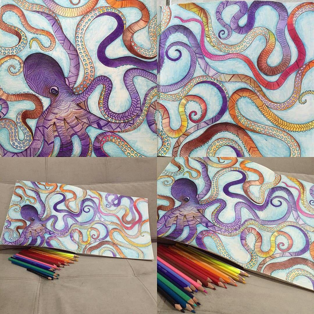 «Colorido super top!!!!! @Regrann from @sandra_psi -  #colorindo #livrosinterativos #colorir #livrosdecolorir  #jardimsecreto #Regrann #artecomoterapia…»