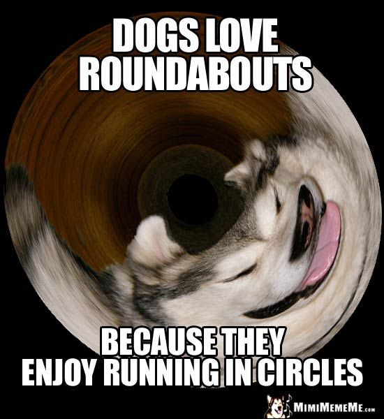 Dog Humor Dogs Love Roundabouts Because They Enjoy Running In