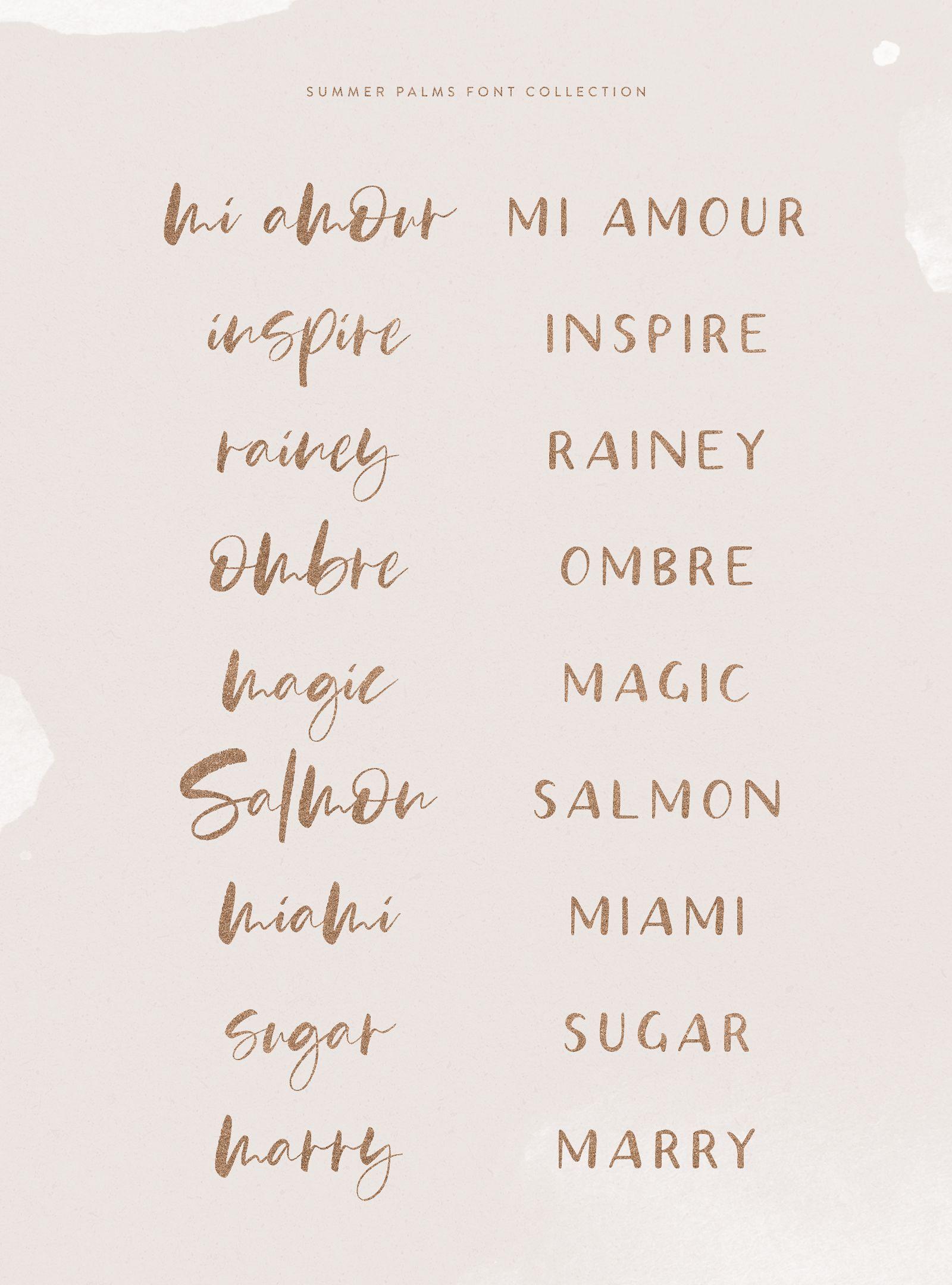 Summer Palms Font Collection Brush Script Hand Lettering Lettering