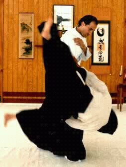Aikido Master Steven Segal Aikido Arts Martiaux Karate